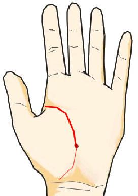 手相画像(メイン):生命線−> 生命線上に生じた赤点 title= 手相の見方ここにあり![生命