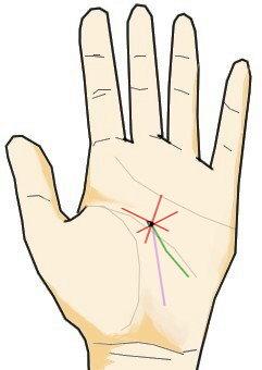 寵愛線が運命線と交わる点に星がある