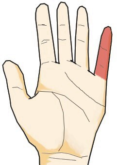 手相からみた小指