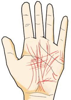 手のひらに縦横無尽に線が走る