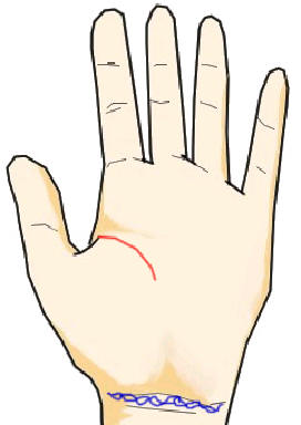 短く薄い生命線と鎖状の手首線