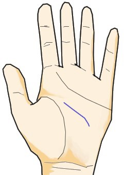 知能線が手のひらの真ん中のみに刻まれる