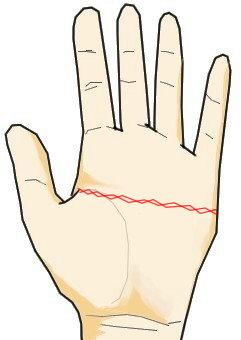 ますかけ線が鎖状に刻まれている