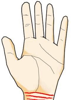 明瞭に刻まれる3本の手首線