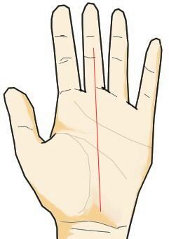 運命線が長く伸びるが中指の中程で止まっている