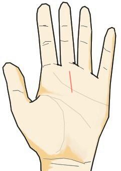 運命線が手のひら上部のみに刻まれる