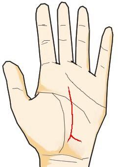 運命線の起点が人の形をしている(土台線)