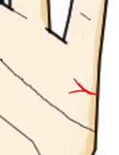 結婚線の末端がY字に別れる(離別線)