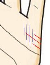 結婚線上に細かい縦線が生じている(行き遅れ線)