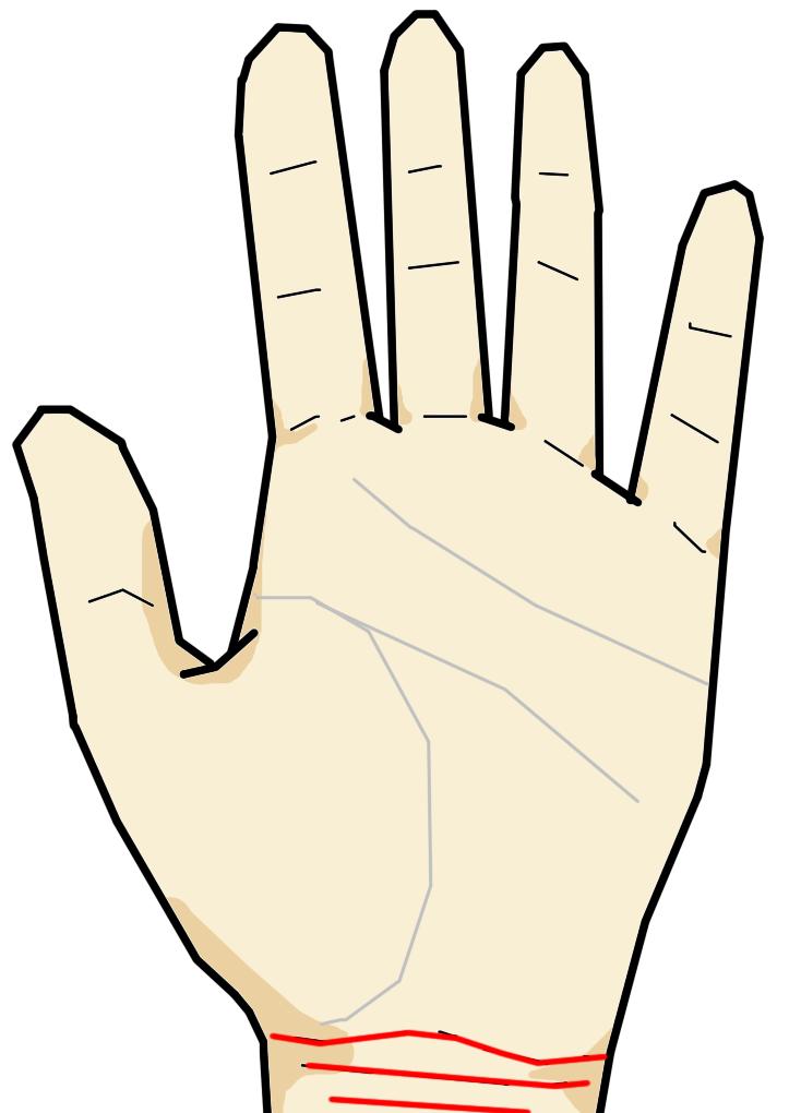 手首線は手首に1~3本程度生じる横向きの線です。生まれ持って生まれた生命力・精力を意味し、明瞭に乱れなく3本刻まれるものが健康体を意味します。