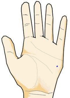・第二火星丘に生じた青色の点 青点はほくろ・シミの意味合いを更に強くしたもので、執拗な攻撃性を意味します。