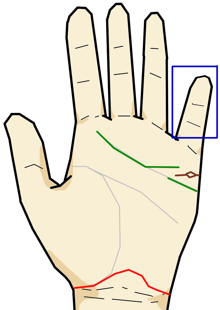 小指に関するストーリー解説