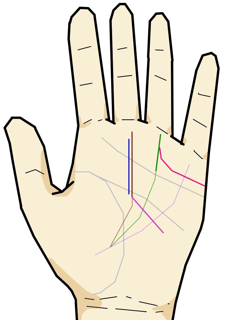●手相の親指に関するストーリー解説
