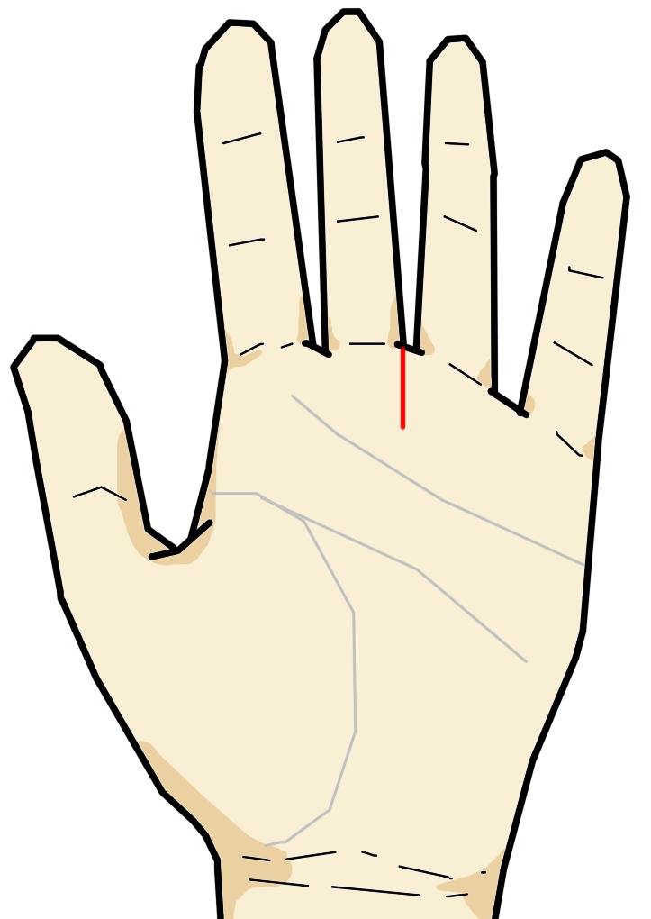 貢ぎ線は中指と薬指の間から生じる縦向きの線です。手相学的に考えれば運命線と太陽線の複合体ということになるのですが、手相では指と指の間に向かう線は利己主義を表すケースが多いので、この線は「運命線の持つ強い仕事運と、太陽線のもつ成功運を利己的に使う」という意味合いに取れます。故に成功による報酬は自分自身へと「貢ぐ」という意味になります。