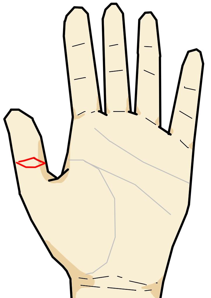 仏眼相  仏眼相は親指の第二関節に生じる、文字通り「目」の形をした相です。この相をもつ人は直感力に優れていたり、記憶力が高かったり、見えないものが見えたりするようです。筆者はこの線を左手の親指に持っていますが、5000時間もの時間、資格取得のために没頭する等、強力な集中力で勉強をしていました。当時の記憶力は非常に高く、見事高難易度の資格を取得するに至ったわけです。